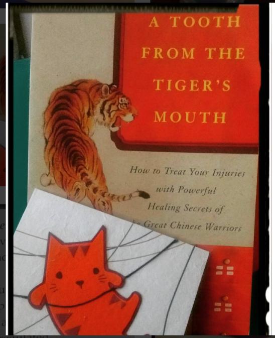 TigersMouth